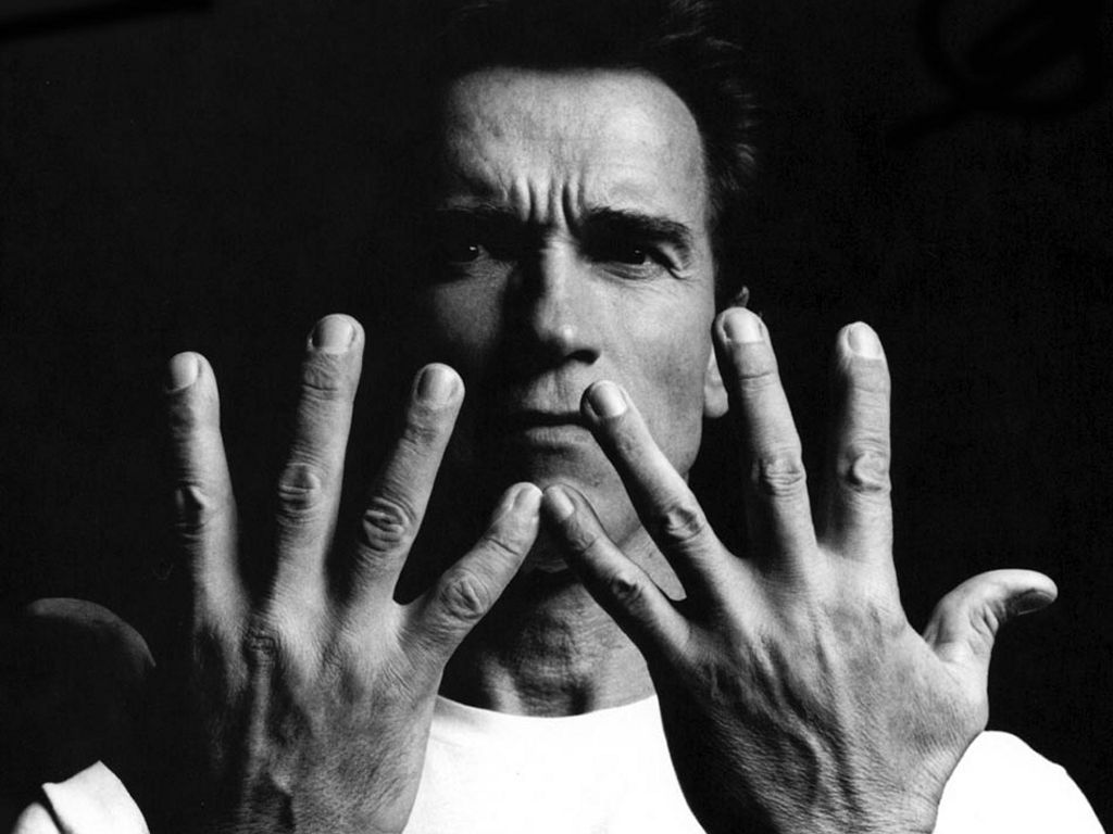 The many faces of arnold schwarzenegger my filmviews the many faces of arnold schwarzenegger malvernweather Image collections